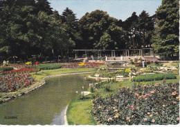Francia-Lyon--Parc De La Tete D'Or--La Roseraie--1966--Cachet-Heyrieux,Isere - Lyon