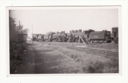Italie  TREVISE   Train   Photo Format Cpa    Année 1946 - Treviso