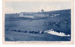La Jasserie - Hôtel Du Mont Pilat - Ses Prairies Et Son Troupeau (provient D'un Carnet) - France