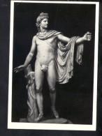 J1362 Apollo Di Belvedere - Roma, Museo Vaticano - Sculture, Skulptur, Art, Kunst - Ed. ER Vera Fotografia - Mostre, Esposizioni