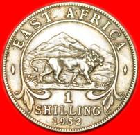 ★LION★ EAST AFRICA 1 SHILLING 1952!  LOW START★NO RESERVE! - Colonie Britannique