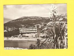 Postcard - Bosnia, Neum     (V 23877) - Bosnië En Herzegovina