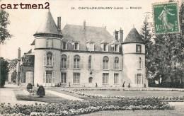 CHATILLON-COLIGNY MIVOISIN CHATEAU MANOIR 45 - Chatillon Coligny