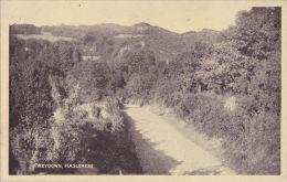 HASLEMERE - WEYDOWN. - Surrey