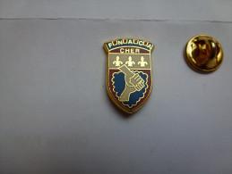 Beau Pin´s En Zamac , Armée Militaire Anciens Combattants , FNACA Du Cher , Blason - Militaria