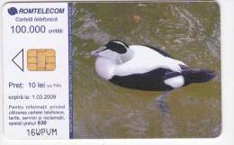 Romania   , Phonecards   , 2008 , Birds ,  Used - Birds