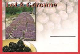 Collection D'enveloppes Illustrées Du Département Du LOT ET GARONNE - Unclassified
