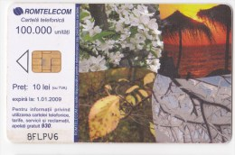 Romania ,  Phonecard  , 2008 , Flowers , Calendar, Used - Romania
