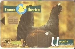 B-061 TARJETA DE ESPAÑA DE EL UROGALLO (NUEVA-MINT EN BLISTER) BIRD-PAJARO (FAUNA IBERICA) - Basisuitgaven