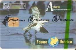 B-070 TARJETA DE ESPAÑA DE LA AVOCETA (NUEVA-MINT EN BLISTER) BIRD-PAJARO (FAUNA IBERICA) - Basisuitgaven