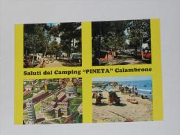 PISA - Calambrone - Saluti Dal Camping Pineta - Quattro Vedute - Pisa
