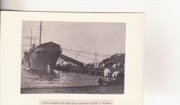 Photo De Presse - Embarquement De Chevaux à Bord De L'ADOUR, à TOULON - Bateaux