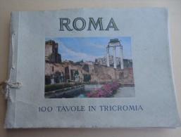 Editore Enrico Verdesi - ROMA - 100 Tavole In Tricromia / 100 Planches Photographies En Couleurs - Photo