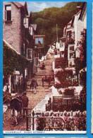 OV888, Clovelly, High Street, Mule, Donkey, Mulet, Baudet, Animée,  Circulée 1950 - Clovelly