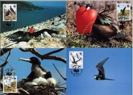 Ascension 1990 Yvertn° CM MK 503-06 (°) Used Cote Des Timbres 12 Euro Oiseaux Vogels Birds - Ascension (Ile De L')