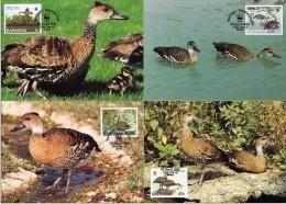 Bahamas 1988 Yvertn° CM MK 659-62 (°) Used Cote Des Timbres 11 Euro Oiseaux Vogels Birds - Bahamas (1973-...)