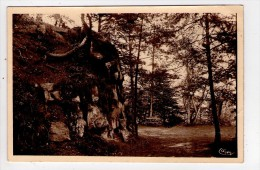 CP 9*14/BA1224/BRUYERES ROCHES DE L AVISON  1949 - Bruyeres
