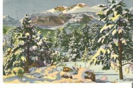 2226 Longs Peak and Mt. Meeker in Winter, Rocky Mountain National Park, Colorado