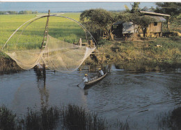 CAMBODGE - Pêche Au Filet - Cambodja