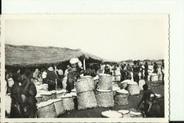 CAR24   --   OUBANGUI  ( A.E.F. )   --   MARCHE AU COTON  --  REAL PHOTO PC - Centraal-Afrikaanse Republiek