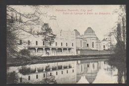 DF / BELGIQUE / LIEGE / EXPOSITION UNIVERSELLE DE LIEGE 1905 / PALAIS DE L'AFRIQUE ET PALAIS DES BEAUX ARTS - Liege