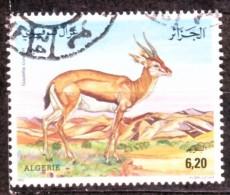 Algérie -Espèce Protégée , Gazelle - Timbre Oblitéré N° YT 1017 - Algerien (1962-...)