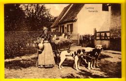 LAITIERE FLAMANDE MELKMEISJE HONDENKAR ATTELAGE DE CHIEN * DOG DRAWN CART * HONDEKAR VOITURE à CHIENS * HUNDEKARRE 1770 - Fermes