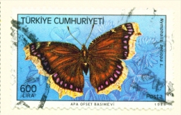 TURKEY  -  1988  Butterflies  600l  Used As Scan - 1921-... Republic