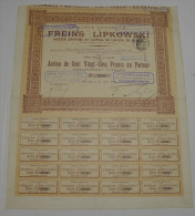 Freins Lipkowski - Automobile