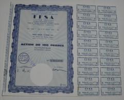 FFSA, Nouvelle Dénomination Fiat France Les Champs Elysees - Automobile