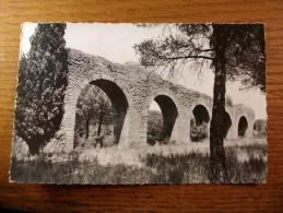 Carte Postale Frejus Vestiges De L'Aqueduc Romain Oblitéré 1962 - Frejus