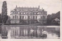AK Dresden - Großer Garten - Palais Mit Teich (11794) - Dresden