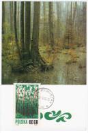 Poland 1986 Sucha Beskidzka - Cartes Maximum