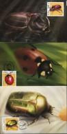 PA1394 Oran 2006 Insect Beetle Maximum Card MNH - Aland