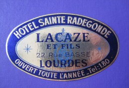 HOTEL MOTEL PENSION SAINTE RADEGONDE LOURDES FRANCE TAG STICKER DECAL VINTAGE LUGGAGE LABEL ETIQUETTE AUFKLEBER - Hotel Labels