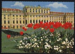 Wien-vienna-schonbrunn Palace-unused,perfect Shape - Wien