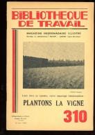 BT   Bibliothèque De Travail 310 Plantons De La Vigne - 6-12 Years Old