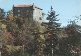 CPM 43 - Retournac - Château De Ribès - Retournac