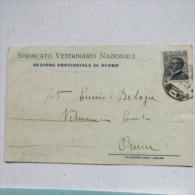 NUORO - SINDACATO VETERINARIO NAZIONALE - SEZIONE PROVINCIALE 1927 - Nuoro