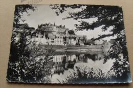 37 - Indre Et Loir - Amboise - La Château Encadré Dans La Verdure - Dentelée - Amboise