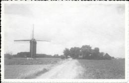 HUISE - Koutermolen - Moulin à Vent - Zingem