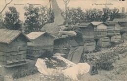 Marcigny (71 - Saone Et Loire) Série Apiculture N° 3/3 Transvasement Rentrée Des Abeilles (divers Défauts Et Un Manques) - Other Municipalities