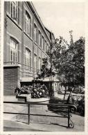 BELGIQUE - ANVERS - BOOM - Gesticht O. L. VrPresentatie - Institution Présentation N.D. - Terras - Terrasses. - Boom