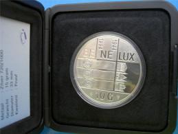 OLANDA 10 G 1994 ARGENTO PROOF 50 ANNI DEL BENELUX BEATRIX PESO 15g TITOLO 0,720 CONSERVAZIONE FONDO SPECCHIO CON COFANE - Paesi Bassi