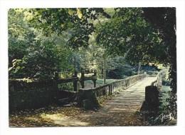 CPM - FOUESNANT (29) PAYSAGE BRETON - Sous - Bois - Cachet FOUESNANT (pont En Bois) - Fouesnant