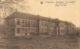 Poperinge: Sanatorium �St Idesbald� op �De Lovie�: Paviljoen St Louis