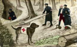 7048 -  Les Chiens Dans La Guerre De 1914-1918, Le Chien Sanitaire Dans Les Vosges - Chiens