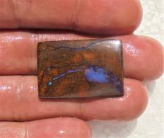 Australian Boulder Opal (31.6 Ct) - Ready For Setting - Opale