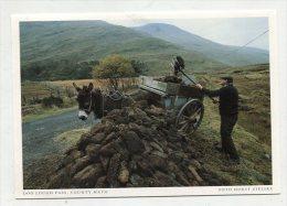 IRELAND - AK 219373 County Mayo - Doo Lough Pass