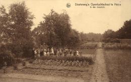 BELGIQUE - ANVERS - KALMTHOUT - Diesterweg's Openluchtschool Te Heide - In Den Moestuin. - Kalmthout